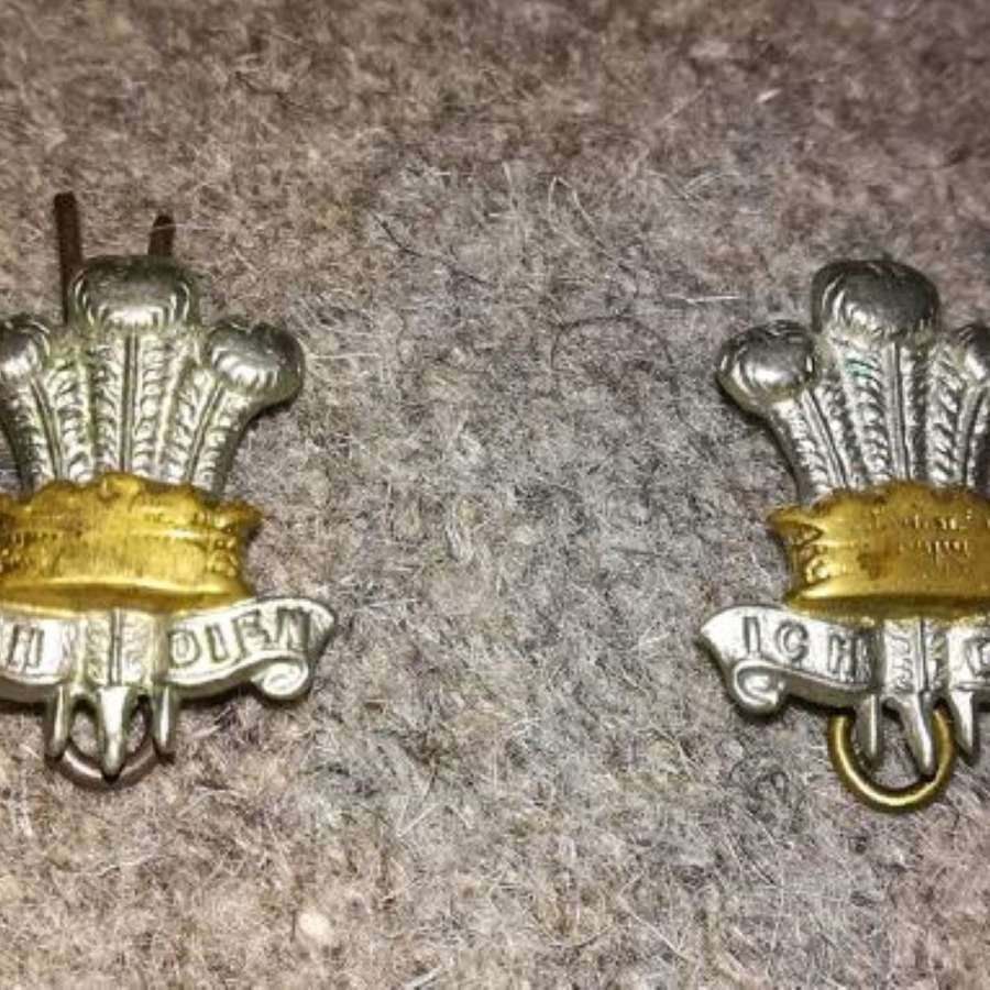 Pre-1922 Leinster Regiment Collar Badges Pair