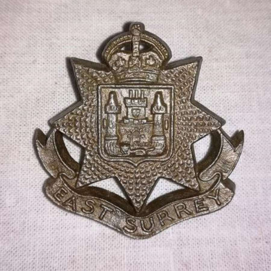 Plastic Economy East Surrey Cap Badge